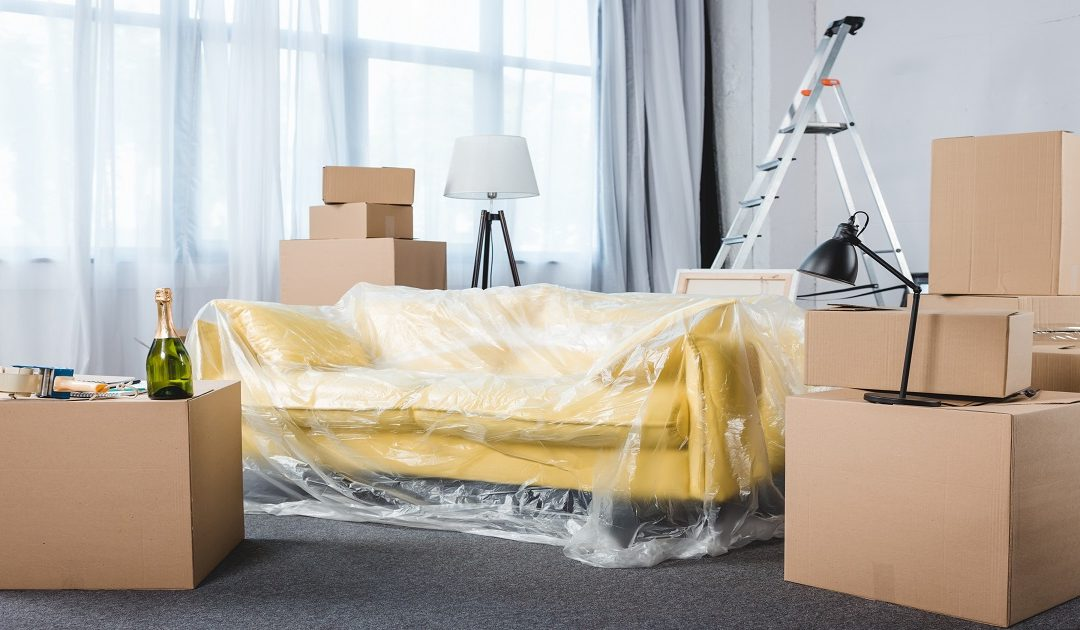 Best Auckland Removals