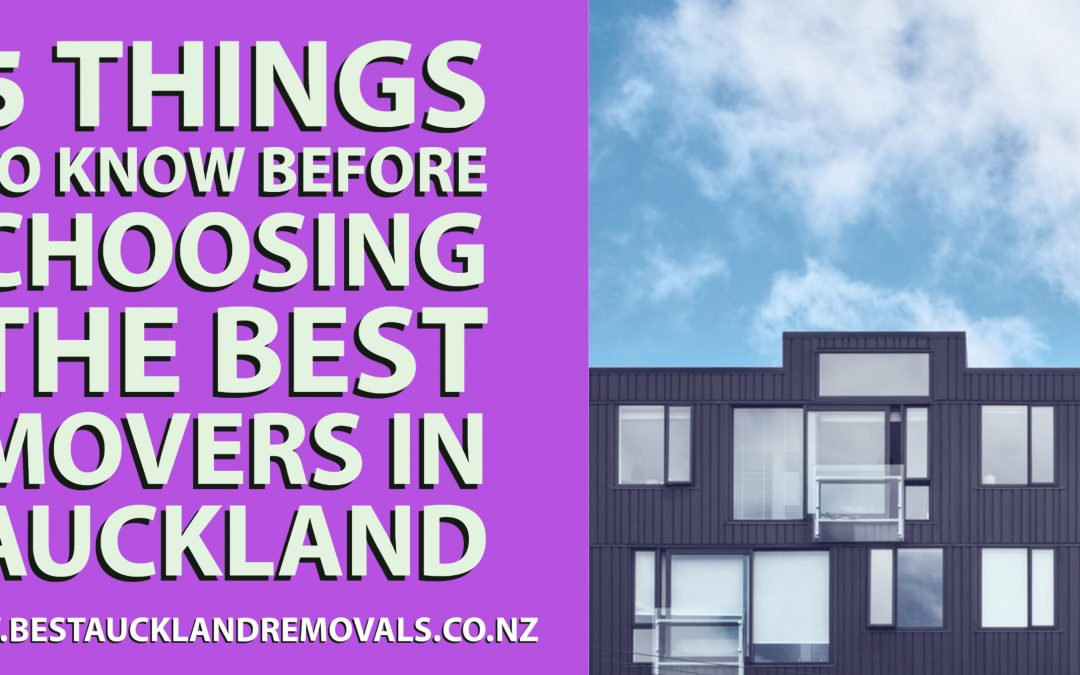 5 Things to Know Before Choosing the Best Movers in Auckland